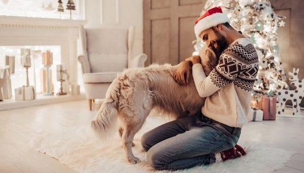 Meilleurs films de chiens de Noël
